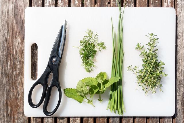Rostlinky využijete v kuchyni